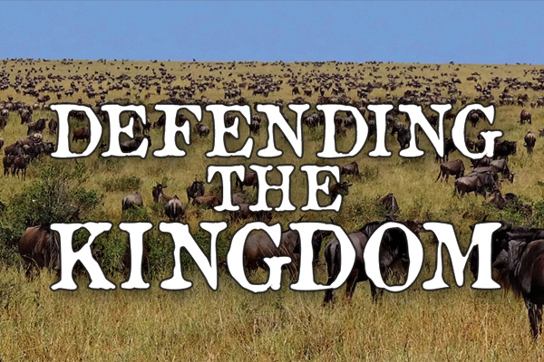 Defending the kingdom | Issue 15